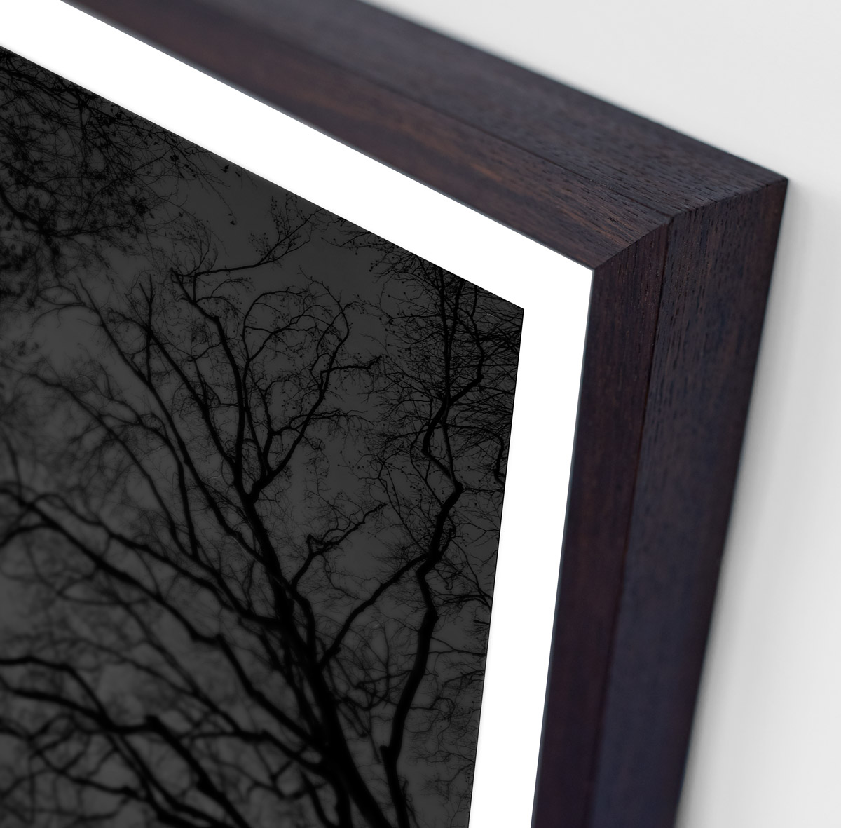 Detail of black and white fine art photography print of bare trees framed in smoked oak size 80×103 cm