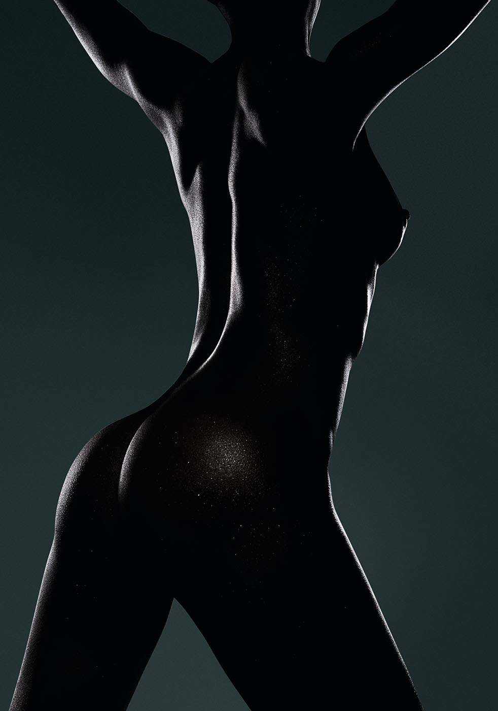 Dark nude female torso in silhouette by photographer Kenneth Rimm