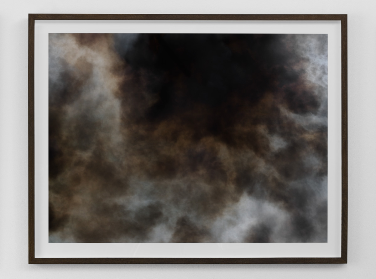 Exhibition view from the Wildfire series by photographer Kenneth Rimm.